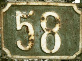 58-raiul-din-bobul-de-orez