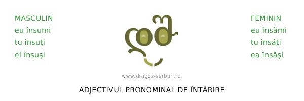 adjectivul-pronominal-de-intarire