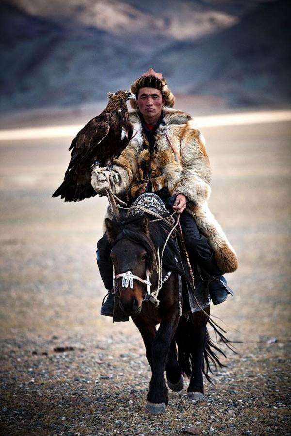 calaret-mongol-cu-vultur-calator