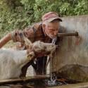 capra-vesinului-apa