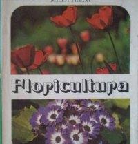 floricultura-milea-preda