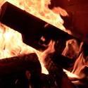 foc-lemne-daltuite