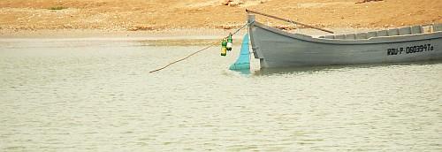 luntre-pescarul-trist-de-dunare