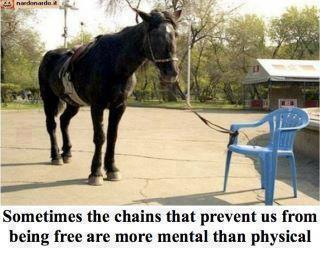 magar-legat-scaun-plastic