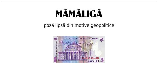 mamaliga-de-cinci-lei