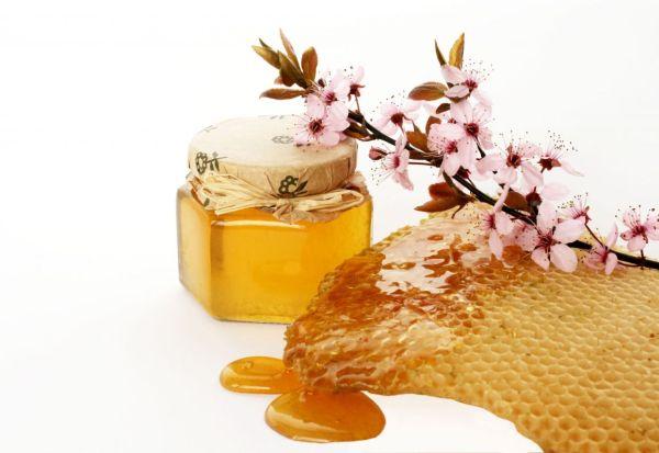 miere-apicultura-apicol