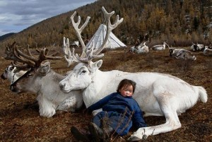 Mongolian nomad boy sleeping