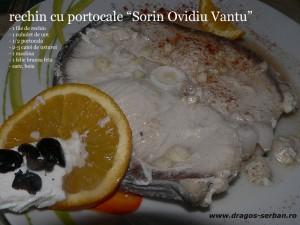 rechin-portocale-sorin-ovidiu-vantu